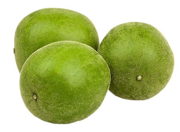 Reviews for pure garcinia cambogia