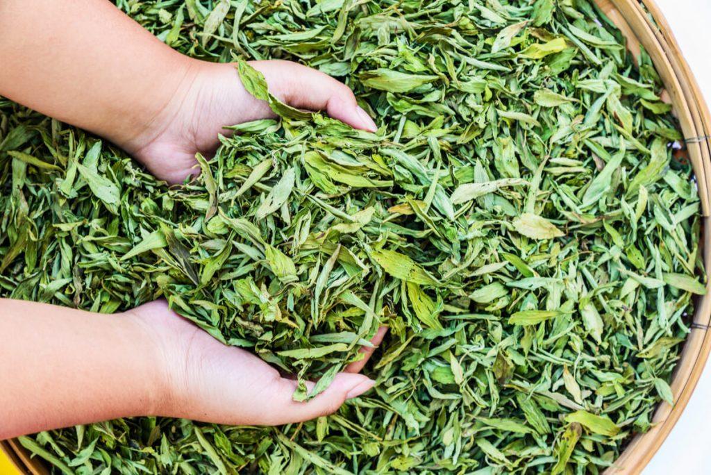 stevia leaves in a basket